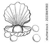 rough vector sketch of a sea... | Shutterstock .eps vector #2023869083