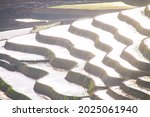 Nice Rice Terrace With Water In ...