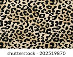 brown and black leopard pattern.... | Shutterstock . vector #202519870