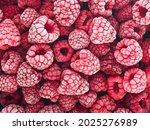 Berries Background   Frozen...