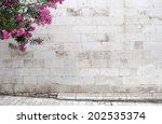 Oleander Flowers On Empty...
