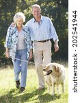 Stock photo senior couple walking dog 202541944