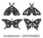 mystical boho celestial... | Shutterstock .eps vector #2025504863
