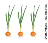 green onion isolated on white... | Shutterstock .eps vector #2025881933