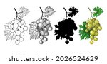 a set of four bunches of grapes.... | Shutterstock .eps vector #2026524629