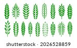 branch graphic award or... | Shutterstock .eps vector #2026528859