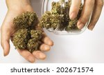 close up of hands holding... | Shutterstock . vector #202671574