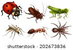 illustration of the different... | Shutterstock .eps vector #202673836