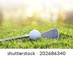 golf club and ball in grass   Shutterstock . vector #202686340
