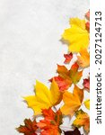 Autumn Mood Background. Frame...