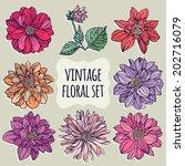 Vintage Floral Set. Dahlias.