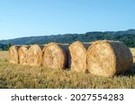 Harvesting Bales Of Straw In...