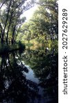 Small photo of Calm river. Summer time. Specular reflection of trees.