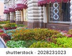 Urban Flower Bed With Lush...