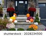 Different Coloured Pumpkins And ...