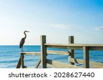 A Gray Heron On A Railing Of A...