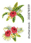 Tropic Summer Hibiscus And...