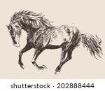 horse vintage engraved...