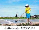 namdinh  vietnam july 4  2014 ... | Shutterstock . vector #202956190