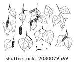 vector set of birch twigs of...   Shutterstock .eps vector #2030079569