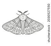 decorative fantastic moth.... | Shutterstock .eps vector #2030527550