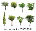 Stock photo collection of tree isolated on white background 203057386