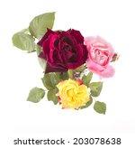 top view of flowers in vase | Shutterstock . vector #203078638