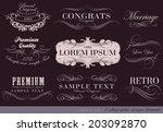 calligraphic design elements... | Shutterstock . vector #203092870