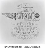 calligraphic design elements    ... | Shutterstock . vector #203098036