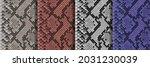 snake skin seamless patterns... | Shutterstock .eps vector #2031230039