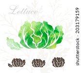 lettuce icons set. | Shutterstock .eps vector #203179159