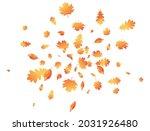 autumn leaves flying... | Shutterstock .eps vector #2031926480