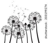 vector illustration of dandelion | Shutterstock .eps vector #203199274