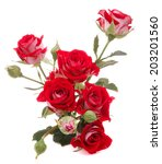 Stock photo red rose flower bouquet isolated on white background cutout 203201560