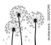 black vector dandelions | Shutterstock .eps vector #203207290