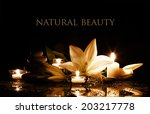 beauty composition with white...   Shutterstock . vector #203217778