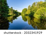 A Calm River In A Green Forest. ...