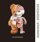 anatomy slogan with bear doll... | Shutterstock .eps vector #2032453133