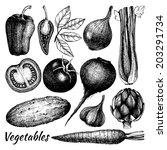 carciofo,barbabietola,carota,sedano,cetriolo,disegnato,cc),incisa,incisione,fresco,mano,erbe,ingrediente,inchiostro,alloro