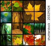 Autumn themed collage  ...