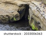 Cave On The La Jolla Cove...