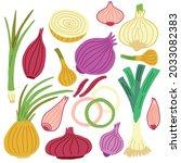 set onions green  shallot ... | Shutterstock .eps vector #2033082383