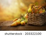 autumn nature concept. fall... | Shutterstock . vector #203322100