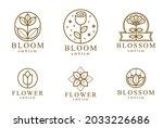 flower in geometric linear... | Shutterstock .eps vector #2033226686