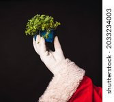 Small photo of Broccoli put forth shoots, healthy food, diet