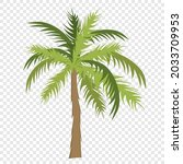 palm tree with green leaves ...   Shutterstock .eps vector #2033709953