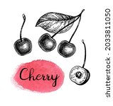 cherry set. ink sketch isolated ... | Shutterstock .eps vector #2033811050