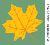 simplicity maple leaf freehand... | Shutterstock .eps vector #2033897576