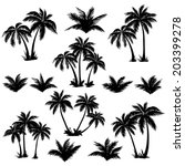 Set tropical palm trees with leaves, mature and young plants, black silhouettes isolated on white background. Vector