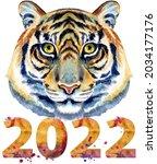 tiger horoscope character...   Shutterstock . vector #2034177176